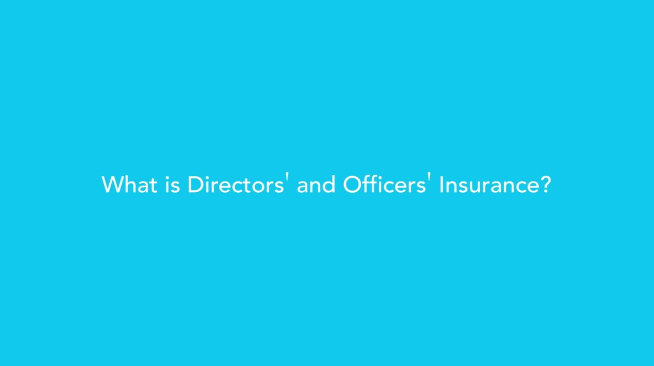 What Is Directors & Officers Insurance?