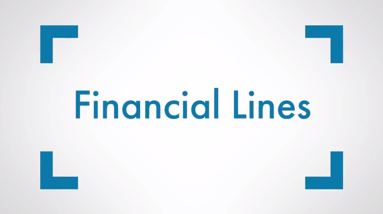 WHY AIG: Financial Lines Solutions